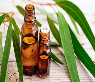 Tinh dầu ngăn ngừa sự lây lan của bệnh cúm (Phần 2 - End)