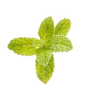 Viên Uống Bạc Hà - Peppermint Softgels