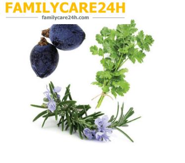 Thải Độc Gan, Thận Dạng Viên Nang - Zendocrine ® Softgels
