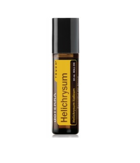 Cúc bất tử chai bi lăn-Helichrysum Touch